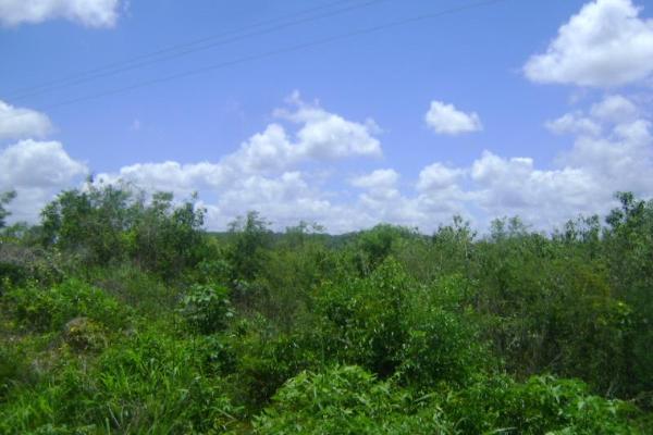 Foto de terreno comercial en venta en carretera camp-merida kilometro 59, san pedro, tenabo, campeche, 2687789 No. 07