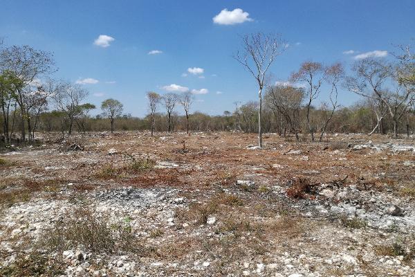 Foto de terreno habitacional en venta en  , komchen, mérida, yucatán, 3088218 No. 01