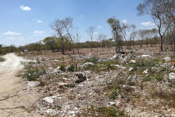 Foto de terreno habitacional en venta en  , komchen, mérida, yucatán, 3088218 No. 04