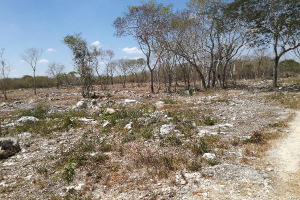 Foto de terreno habitacional en venta en  , komchen, mérida, yucatán, 3088218 No. 05
