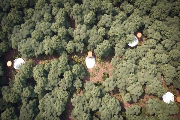 Foto de terreno habitacional en venta en kuyabeh, carretera tulum-coba , francisco uh-may, tulum, quintana roo, 8383752 No. 07
