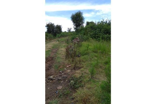 Foto de terreno habitacional en venta en  , el durazno, tepeyanco, tlaxcala, 5726721 No. 01