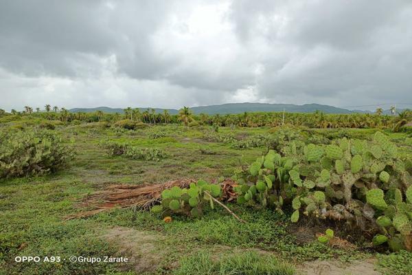 Foto de terreno habitacional en venta en  , la barra de colotepec, santa maría colotepec, oaxaca, 0 No. 02
