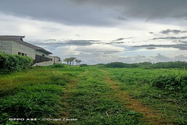 Foto de terreno habitacional en venta en  , la barra de colotepec, santa maría colotepec, oaxaca, 0 No. 04