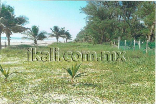 Foto de terreno habitacional en venta en playa norte barra de galindo , la barra norte, tuxpan, veracruz de ignacio de la llave, 2675293 No. 04