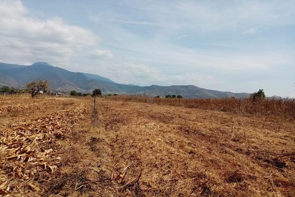 Foto de terreno habitacional en venta en la barranca s/n , paraje los pintos, san lorenzo cacaotepec, oaxaca, 16712521 No. 01