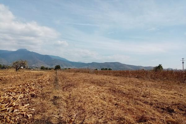 Foto de terreno habitacional en venta en la barranca s/n , paraje los pintos, san lorenzo cacaotepec, oaxaca, 16712521 No. 03