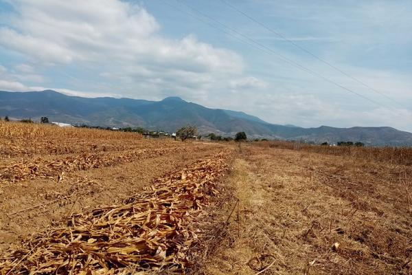 Foto de terreno habitacional en venta en la barranca s/n , paraje los pintos, san lorenzo cacaotepec, oaxaca, 16712521 No. 04