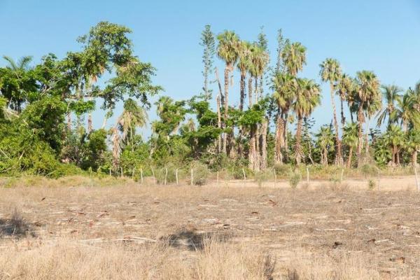 Foto de terreno habitacional en venta en la cachora la trinidad lot 17 , la escondida, la paz, baja california sur, 6153167 No. 07