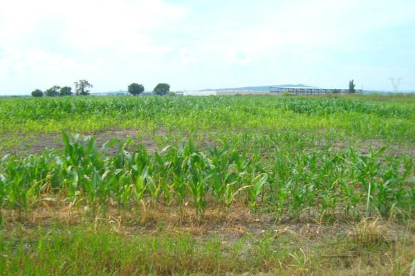 Foto de terreno habitacional en venta en  , la calera, tlajomulco de zúñiga, jalisco, 14031593 No. 01