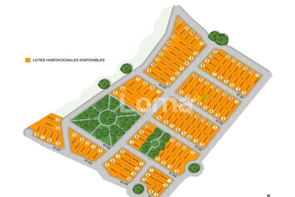 Foto de terreno habitacional en venta en  , la cañada, comala, colima, 0 No. 07