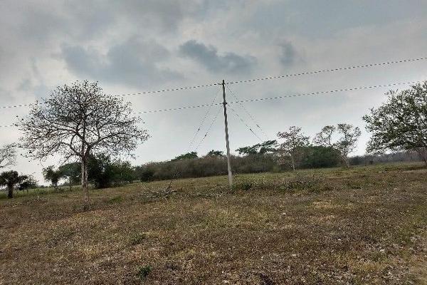Foto de terreno habitacional en venta en  , la capilla, cotaxtla, veracruz de ignacio de la llave, 5695470 No. 17