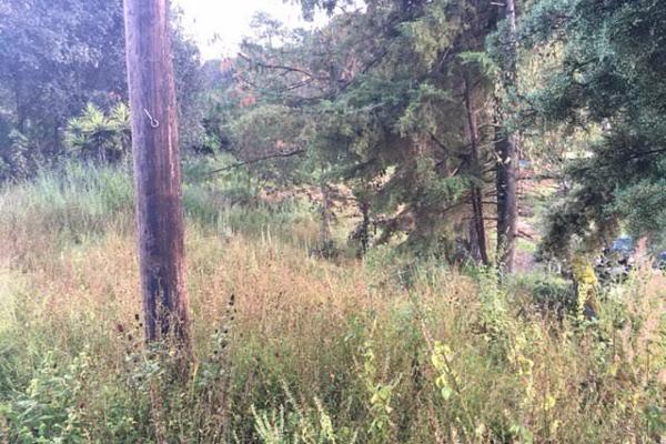 Foto de terreno habitacional en venta en la compañía , cerro colorado, valle de bravo, méxico, 4634033 No. 01