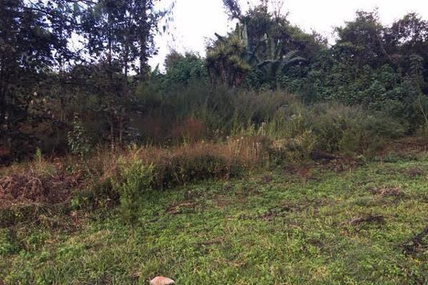 Foto de terreno habitacional en venta en la compañía , cerro colorado, valle de bravo, méxico, 4634033 No. 02