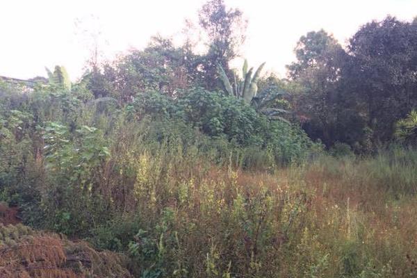 Foto de terreno habitacional en venta en la compañía , cerro colorado, valle de bravo, méxico, 4634033 No. 03