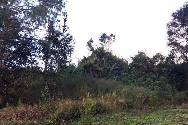 Foto de terreno habitacional en venta en la compañía , cerro colorado, valle de bravo, méxico, 4634033 No. 04