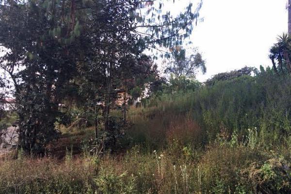 Foto de terreno habitacional en venta en la compañía , cerro colorado, valle de bravo, méxico, 4634033 No. 05