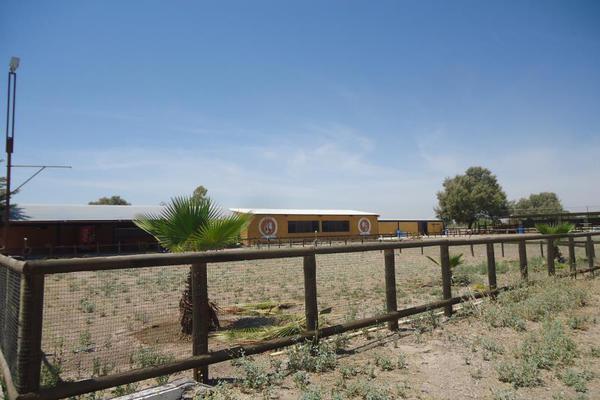Foto de terreno habitacional en venta en  , la concha, torreón, coahuila de zaragoza, 5376533 No. 05