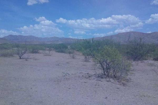 Foto de terreno habitacional en venta en  , la concordia, chihuahua, chihuahua, 5415801 No. 03