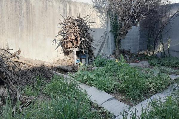 Foto de terreno habitacional en venta en  , la floresta, guadalupe, nuevo león, 0 No. 03