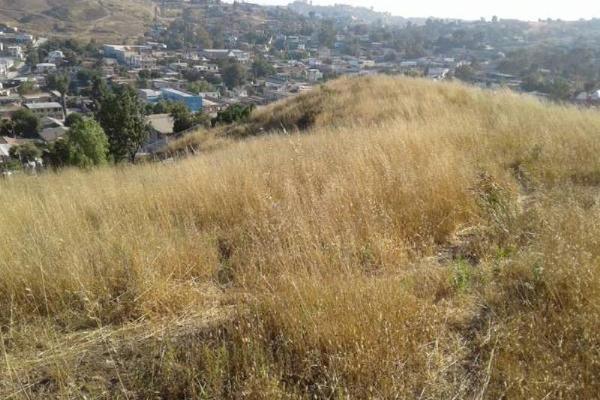 Foto de terreno habitacional en venta en  , la gloria, tijuana, baja california, 5900436 No. 11