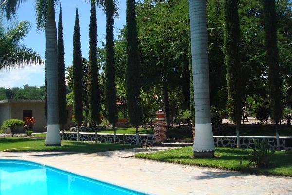Foto de terreno habitacional en venta en  , la glorieta, amacuzac, morelos, 2685740 No. 07