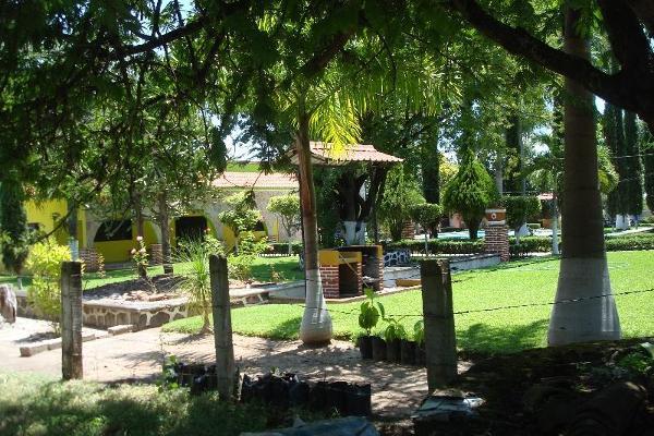 Foto de terreno habitacional en venta en  , la glorieta, amacuzac, morelos, 2685740 No. 15