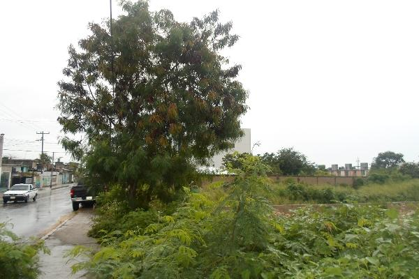 Foto de terreno comercial en venta en  , la guadalupana, benito juárez, quintana roo, 2637944 No. 05