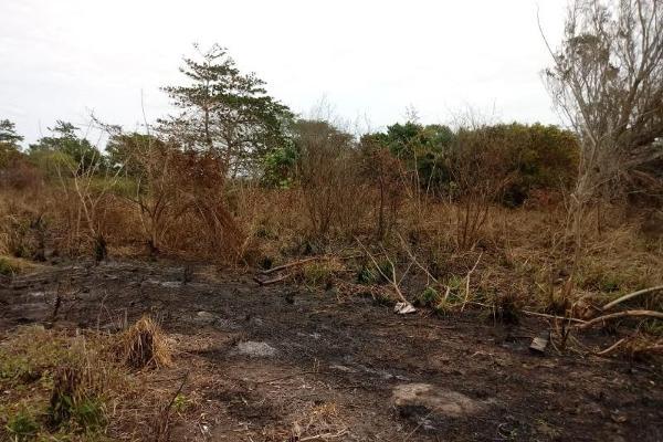 Foto de terreno habitacional en venta en  , la laguna, medellín, veracruz de ignacio de la llave, 6204467 No. 04