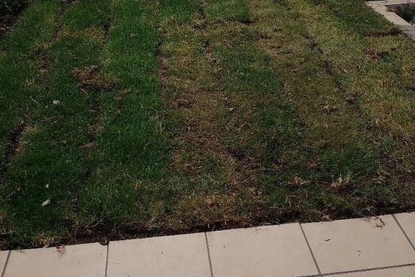 Foto de casa en venta en  , la magdalena, san mateo atenco, méxico, 2637559 No. 20