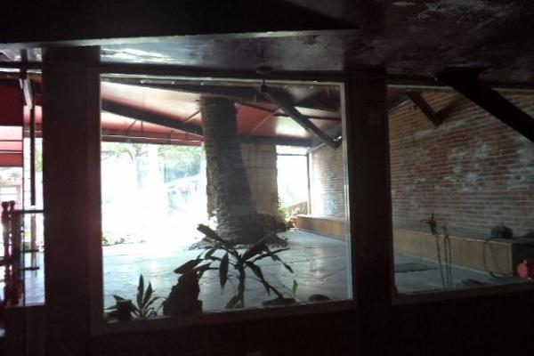 Foto de local en venta en  , la paz, puebla, puebla, 5679260 No. 11