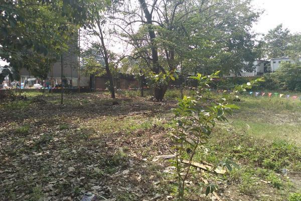 Foto de terreno habitacional en venta en  , la piragua, san juan bautista tuxtepec, oaxaca, 13352232 No. 03