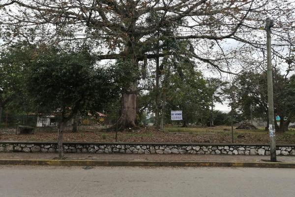 Foto de terreno habitacional en venta en  , la piragua, san juan bautista tuxtepec, oaxaca, 0 No. 03
