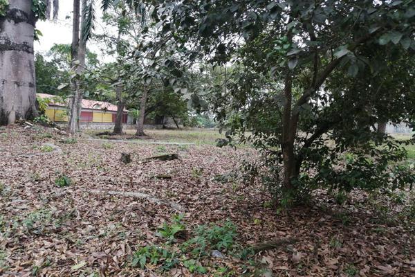 Foto de terreno habitacional en venta en  , la piragua, san juan bautista tuxtepec, oaxaca, 0 No. 05