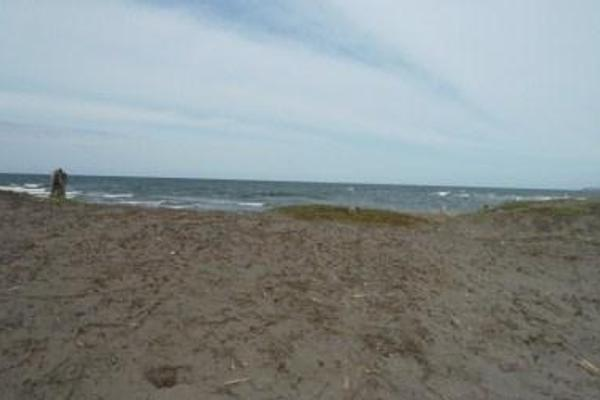 Foto de terreno habitacional en venta en  , la playa, alvarado, veracruz de ignacio de la llave, 8074292 No. 07