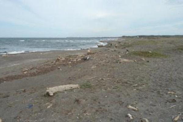 Foto de terreno habitacional en venta en  , la playa, alvarado, veracruz de ignacio de la llave, 8074292 No. 12