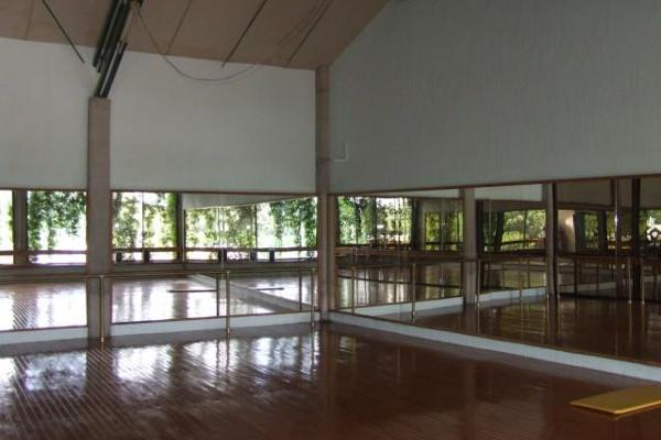 Foto de edificio en venta en  , la pradera, cuernavaca, morelos, 2627578 No. 08
