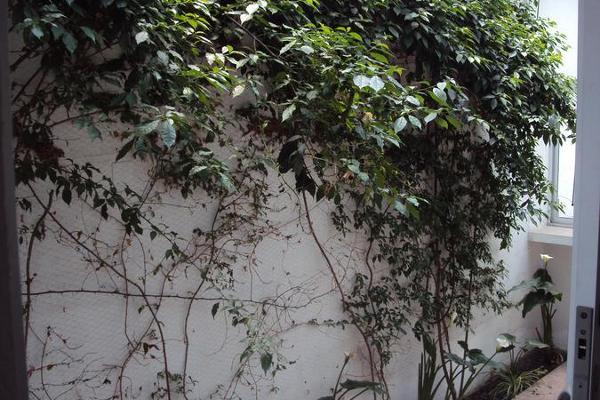 Foto de oficina en renta en  , la providencia, metepec, méxico, 8882888 No. 06
