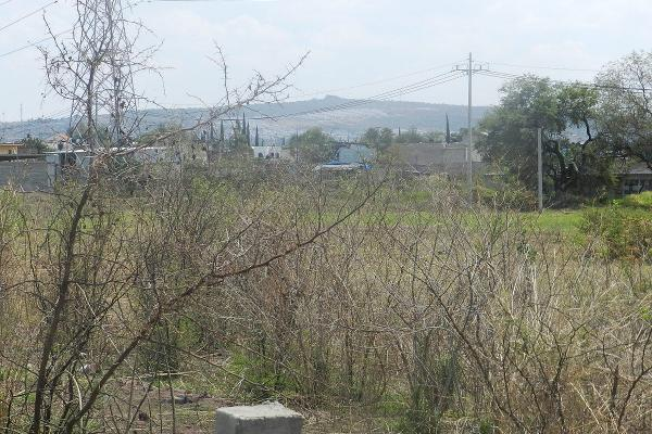 Foto de terreno habitacional en venta en carretera el salto jalisco la purisima s/n el laurel , la purísima, tlajomulco de zúñiga, jalisco, 3423339 No. 10