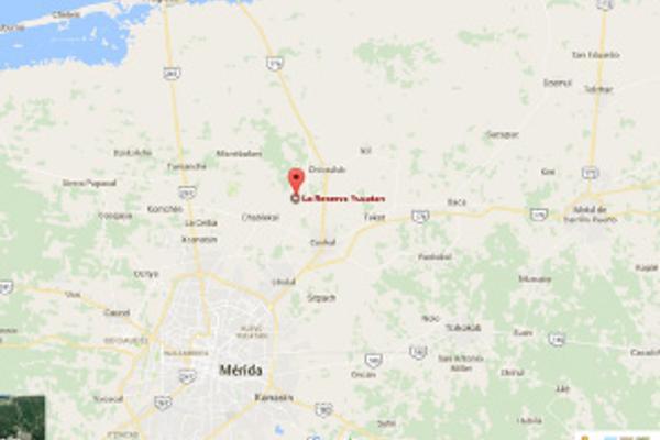 Foto de terreno habitacional en venta en la reserva zona a lote , chicxulub, chicxulub pueblo, yucatán, 6189955 No. 03