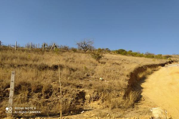 Foto de terreno industrial en venta en la soledad 0, ejido guadalupe victoria, oaxaca de juárez, oaxaca, 0 No. 02