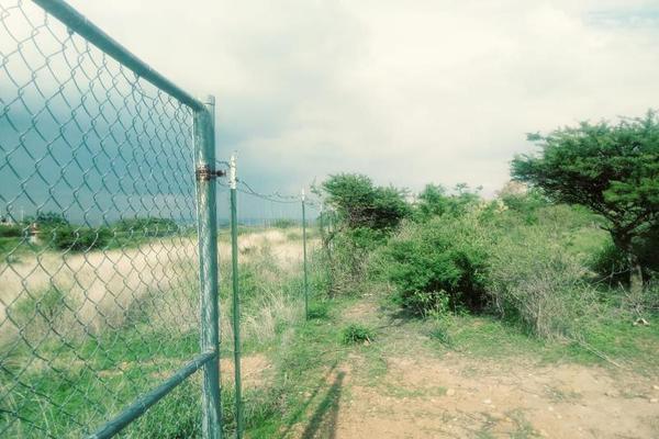 Foto de terreno habitacional en venta en  , la tomatina, jesús maría, aguascalientes, 7978017 No. 04