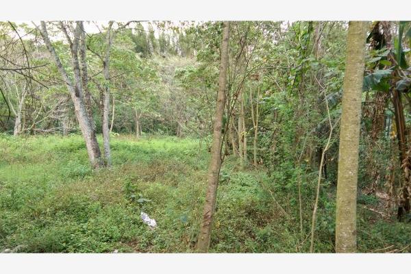 Foto de terreno habitacional en venta en  , la trinidad chica, córdoba, veracruz de ignacio de la llave, 3115483 No. 02