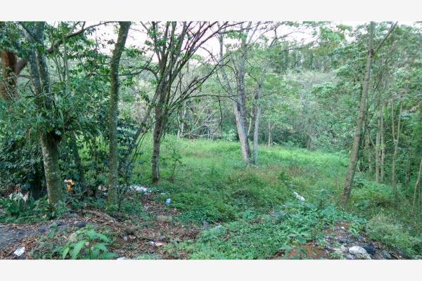 Foto de terreno habitacional en venta en  , la trinidad chica, córdoba, veracruz de ignacio de la llave, 3115483 No. 04