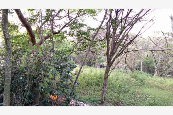 Foto de terreno habitacional en venta en  , la trinidad chica, córdoba, veracruz de ignacio de la llave, 3115483 No. 07