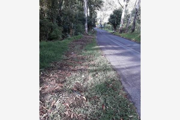 Foto de terreno habitacional en venta en la trinidad tepango 1, la trinidad tepango, atlixco, puebla, 8337315 No. 04