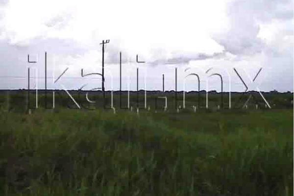 Foto de terreno habitacional en venta en carretera a cobos , la victoria, tuxpan, veracruz de ignacio de la llave, 2693409 No. 03