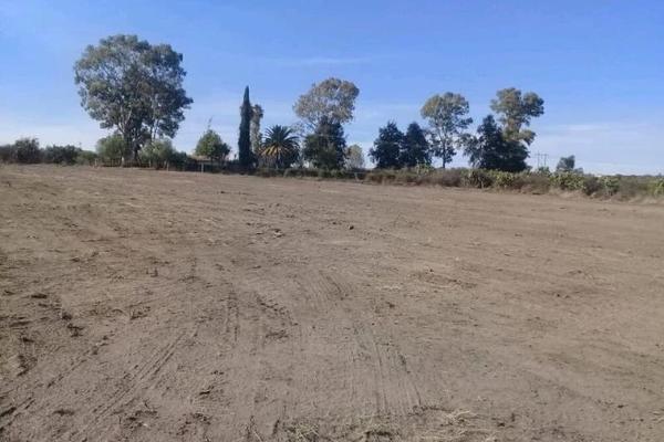 Foto de terreno comercial en venta en  , carril de san ángel, lagos de moreno, jalisco, 7288546 No. 02