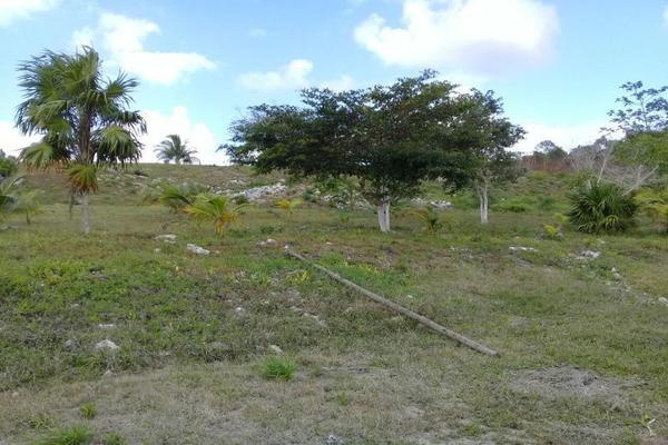Foto de terreno habitacional en venta en laguna 333, bacalar, bacalar, quintana roo, 5338002 No. 02