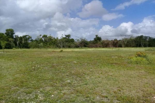 Foto de terreno habitacional en venta en laguna 333, bacalar, bacalar, quintana roo, 5338002 No. 04